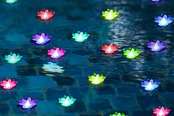 Magical Pool Party